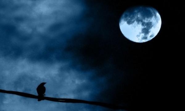 Moon_zahirbabor